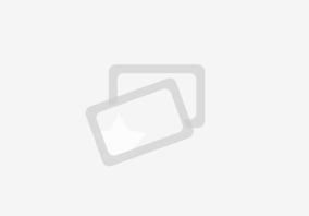 Resümee, die Universität, online und transzendental